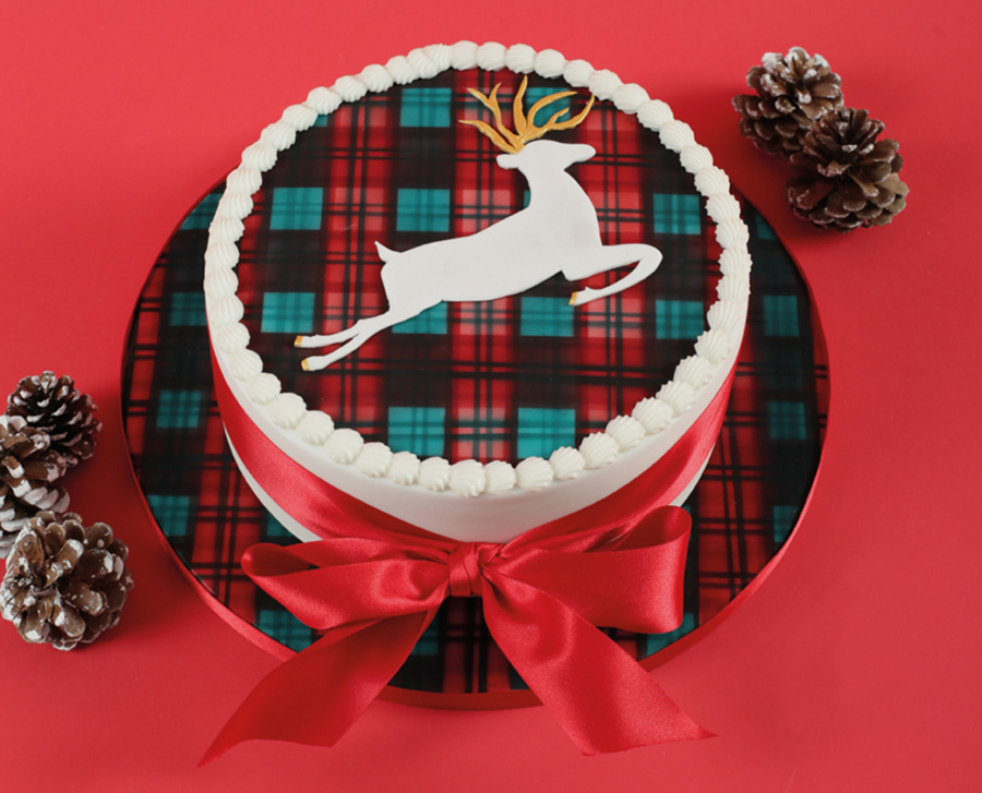 6 amazing airbrushed cakes sweet talk the squires kitchen shop airbrushed tartan christmas cakeg solutioingenieria Gallery
