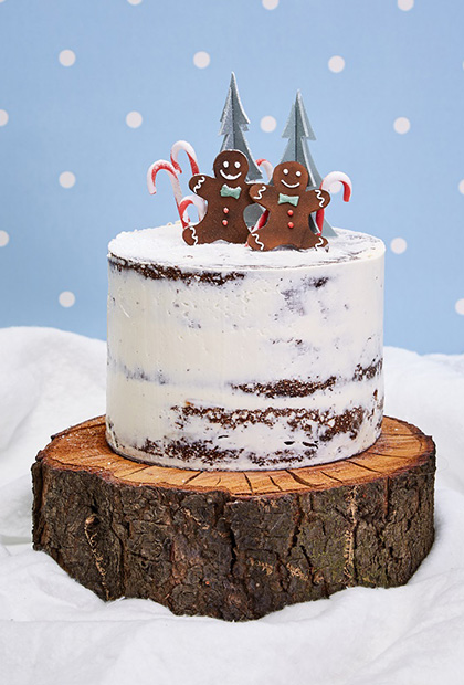 Top Ten Christmas Cakes Sweet Talk - The Squires Kitchen ...